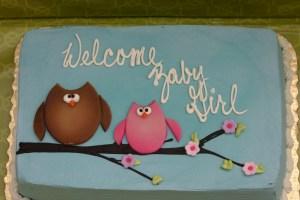 owl baby shower_4654