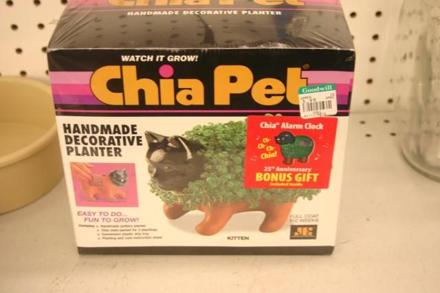 Cat in Box $3.99