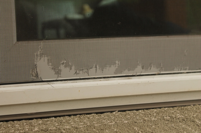 damaged screen